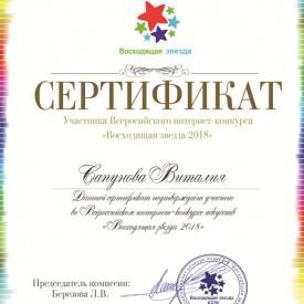 интернет-конкурс искусств «Восходящая звезда 2018»