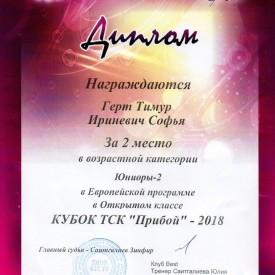 Диплом Кубок ТСК «Прибой» 2018
