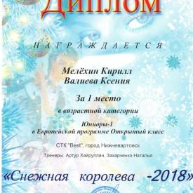 Диплом Мелёхин Кирилл, Валиева Ксения