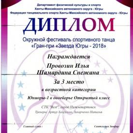 Диплом Провозин Илья, Шамардина Снежана