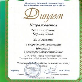 Диплом Телицин Денис, Барциц Лана